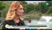psiholog-sofia-blagoevgrad-hazart
